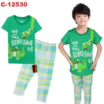 C-12530: Sleepsuit (Short Sleeve+Long Pant) -- 8/1