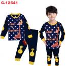 C-12541: Sleepsuit (Long Sleeve+Pant) --  14/1